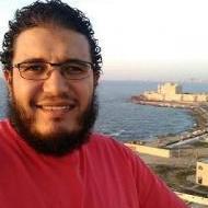 هشام ابو العنين